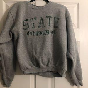 MSU sweatshirt